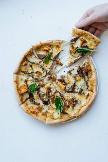 Над головою невідома людина бере скибочку смачної морської піци з грибами і базилік на білому тлі. — стокове фото