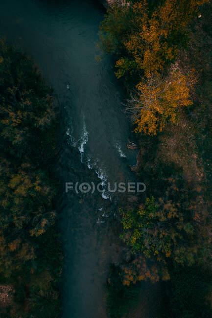 Desde arriba río oscuro espumoso que fluye entre los árboles con follaje verde naranja - foto de stock