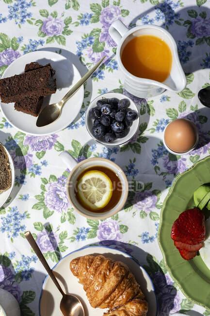 Desayuno casero completo y saludable a la luz del sol con huevos, aguacate, fresas, arándanos, bizcocho, croissants, tostadas, té, café y zumo de naranja - foto de stock