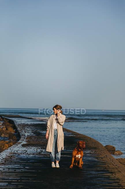 Женщина в повседневной одежде и большая коричневая собака-мастиф смотрят друг на друга, прогуливаясь по мокрому деревянному пирсу против спокойной заливной воды под голубым небом в Испании — стоковое фото