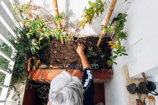 Vieja jardinería en balcón - foto de stock