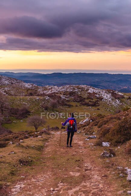 Back view of tourist with backpack and stick looking away and admiring picturesque scenery while hiking on hill road under cloudy sky in Spain — Stock Photo