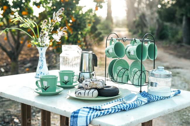 Pique-nique avec dessert délicieux et café aromatique dans le jardin — Photo de stock