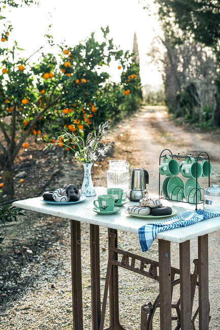 Picnic with yummy dessert and aromatic coffee in garden — Stock Photo