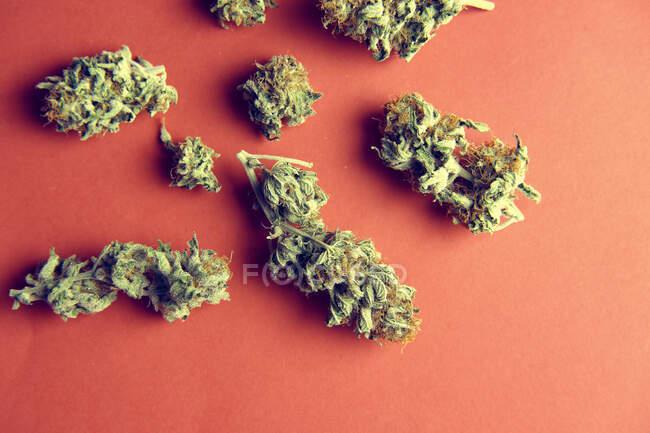 Par-dessus une pile de bourgeons de marijuana à des fins médicales éparpillés sur fond rouge — Photo de stock
