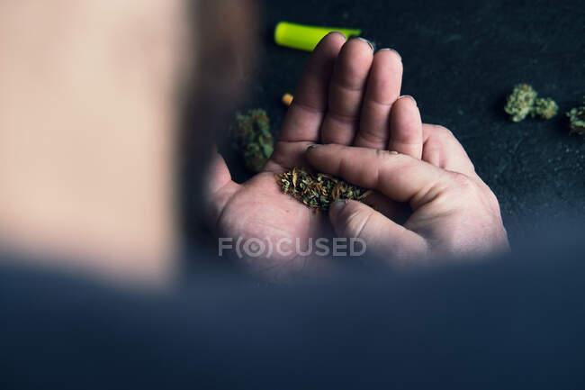 З верху на безликого чоловіка, що тримає в руках марихуану, під час катання тупотить вдома. — стокове фото