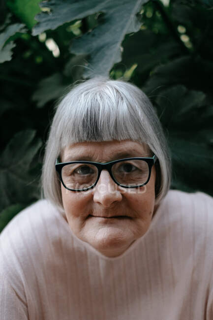 Senior woman with grey hair looking at camera in eyeglasses among plants with big green leafs — Stock Photo