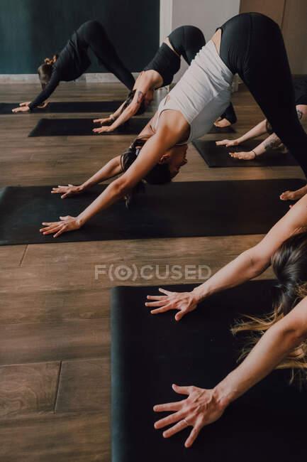 Боковой вид босиком неузнаваемых женщин в спортивной одежде, концентрирующихся и делающих упражнения вниз лицом к собаке на спортивных ковриках на деревянном полу против белых стен просторного зала — стоковое фото
