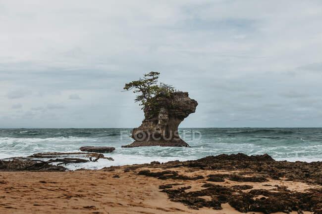 Grande roccia tra mare ondulato blu vicino alla costa della spiaggia con piante tropicali verdi durante il tempo tempestoso — Foto stock