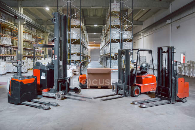 Modern different models of forklift trucks in big warehouse prepared for work day — Stock Photo