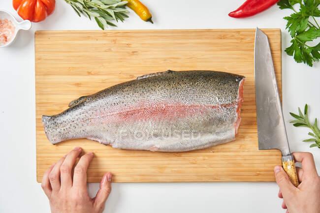 Process of butchering of fresh fish — Stock Photo