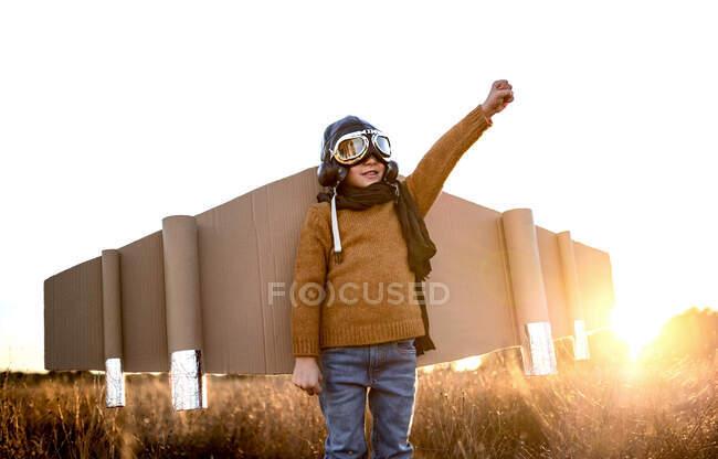 Щаслива дитина в окулярах і картонних крилах піднімає руки під час гри на полі в зворотному освітленні — стокове фото