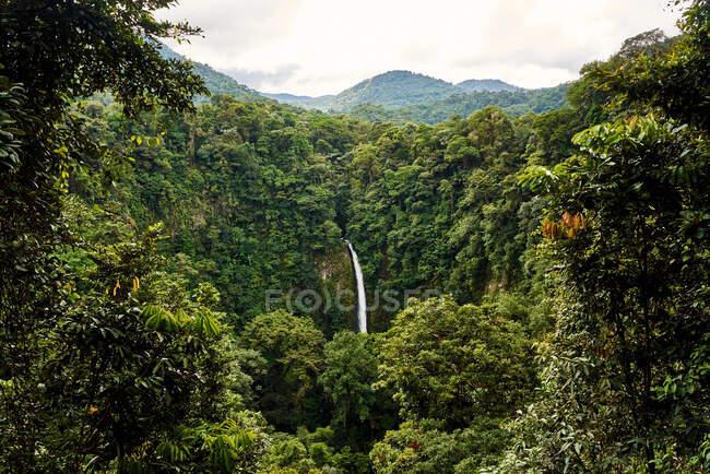 Puissant ruisseau d'eau tombant de la falaise verte dans la jungle étonnante par une journée nuageuse d'été au Costa Rica — Photo de stock