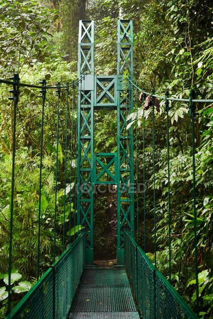 Salida de puente metálico estrecho cerca de arbustos verdes y árboles en la selva en Costa Rica - foto de stock