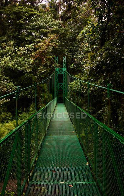 Sortie de pont étroit en métal près des buissons verts et des arbres dans la jungle au Costa Rica — Photo de stock