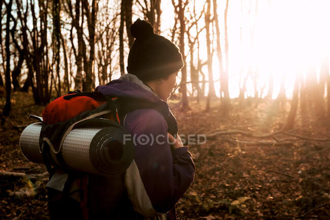 Backpacker trekking in autumn forest — Stock Photo