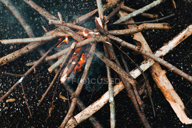 Small bonfire from firewood on ground — Stock Photo