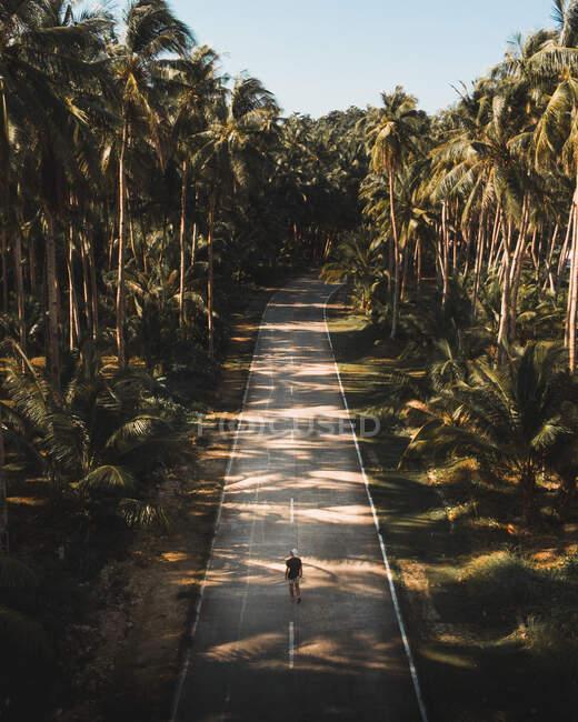 Von oben unkenntliche Person auf leerer Asphaltstraße zwischen grünen tropischen Palmen mit blauem Himmel im Hintergrund — Stockfoto