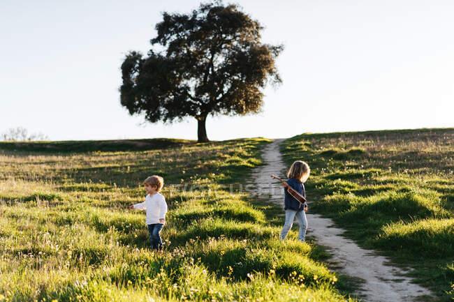 Vista lateral de niño y niña con guitarra ukelele caminando en el campo verde y disfrutando de un soleado día de verano en el campo - foto de stock