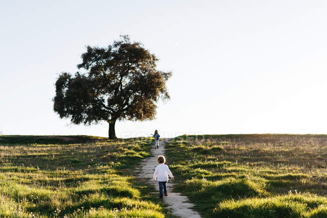 Back view of unrecognizable little boy and girl with ukulele guitar walking on green field and enjoying sunny summer day in countryside — Stock Photo