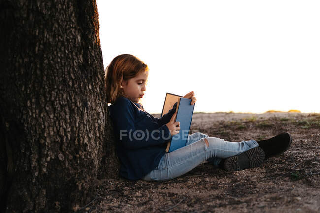 Side view of calm little girl in casual wear reading fairy tale book while sitting under tree in field in sunny summer evening — Stock Photo