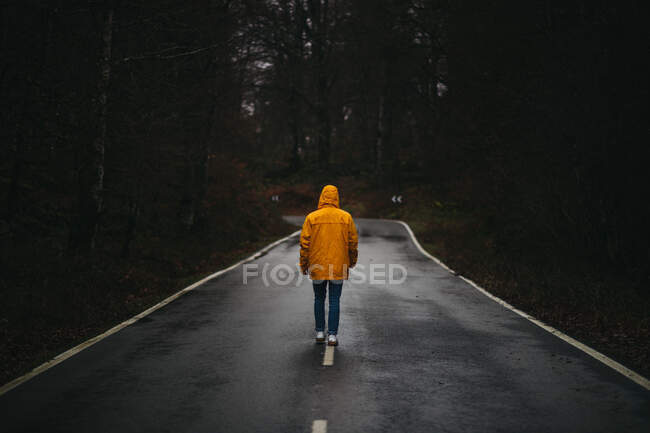 Back view of anonymous man in yellow jacket walking on empty asphalt road among green forest — Stock Photo