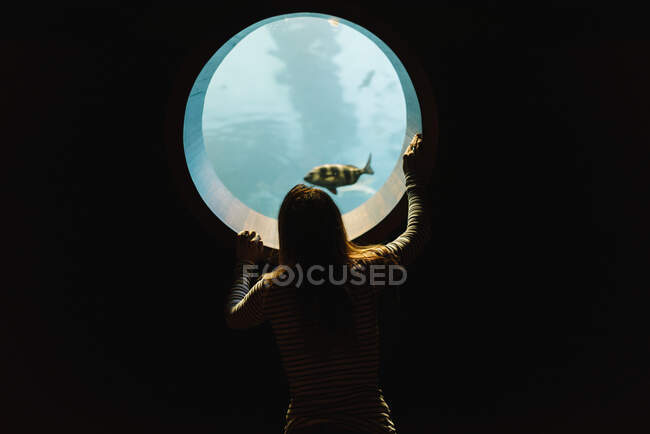 Back view of anonymous woman in casual wear looking at rounded window of aquarium with ocean tropical fishes — Stock Photo