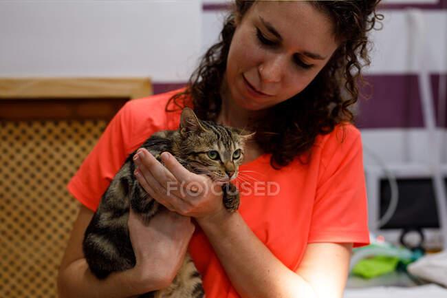 Невпізнавана жінка в помаранчевій уніформі і гумові рукавички перевіряють кота на столі у ветеринарній клініці. — стокове фото