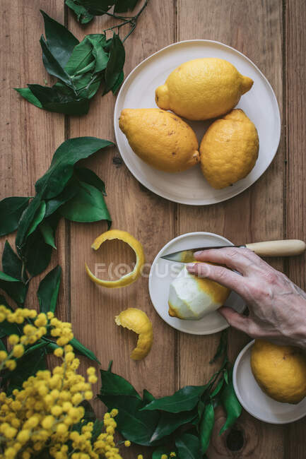 Top view of unrecognizable person hand holding a lemon near peeled and fresh lemons on plates on wooden table with green leaves and yellow flowers — Stock Photo