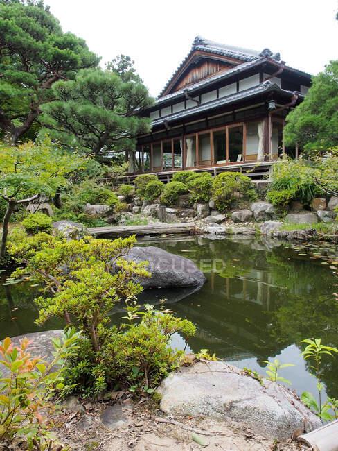 Étang avec de l'eau paisible entourée de buissons verts et situé dans le jardin à l'extérieur authentique maison asiatique au Japon — Photo de stock