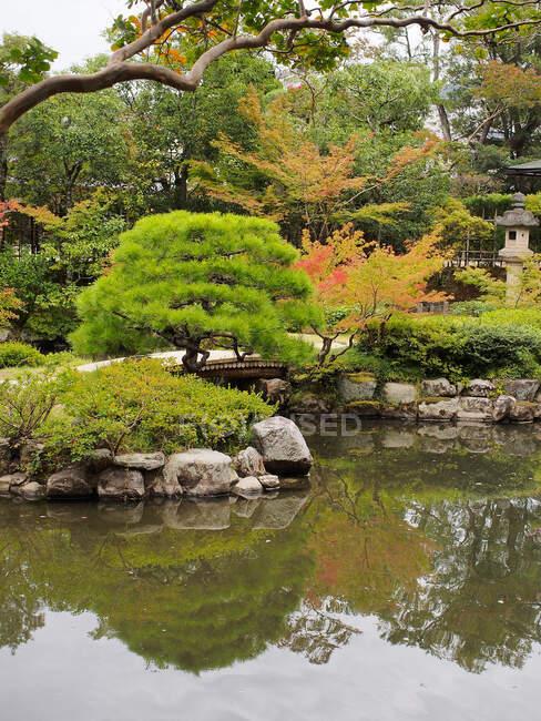 Autumn trees near pond in oriental garden — Stock Photo