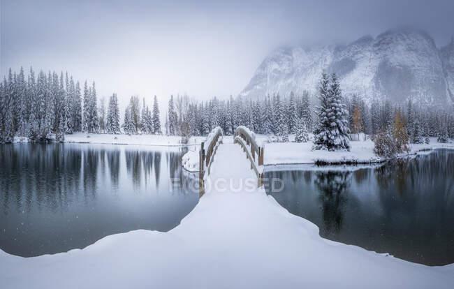 Красивый зимний канадский пейзаж с заснеженным мостом через спокойную воду с еловым лесом и туманными снежными горами на заднем плане — стоковое фото