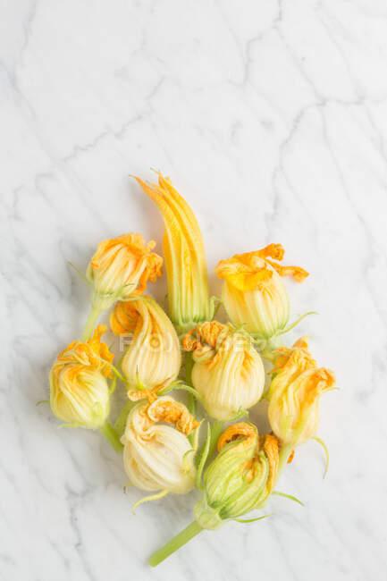 Vue du dessus des fleurs de courgettes jaunes fraîches disposées sur une table en marbre blanc dans la cuisine — Photo de stock