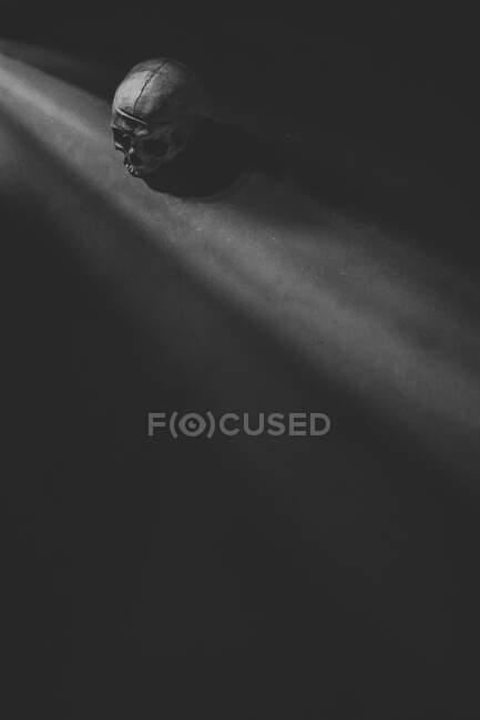 D'en haut crâne humain antique noir et blanc placé près des rayons de soleil dans la pièce sombre — Photo de stock