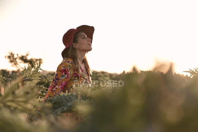 Стильная мечтательная женщина в зеленом поле — стоковое фото