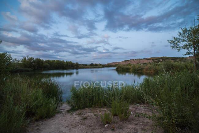 Piccolo molo di legno situato sulla riva erbosa di stagno calmo contro il cielo nuvoloso in campagna — Foto stock