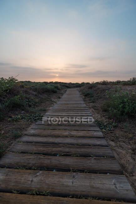 Sentier forestier minable traversant une campagne calme contre un ciel nuageux au coucher du soleil — Photo de stock