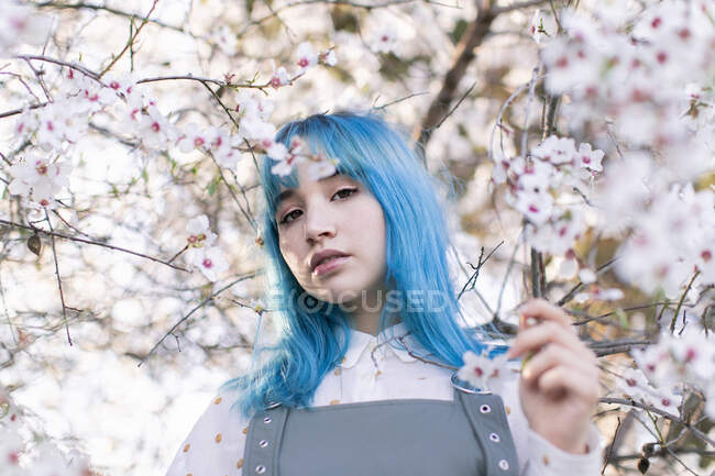 Young stylish female with long blue hair looking at camera wearing trendy overall enjoying blooming tree while standing in spring garden — Stock Photo