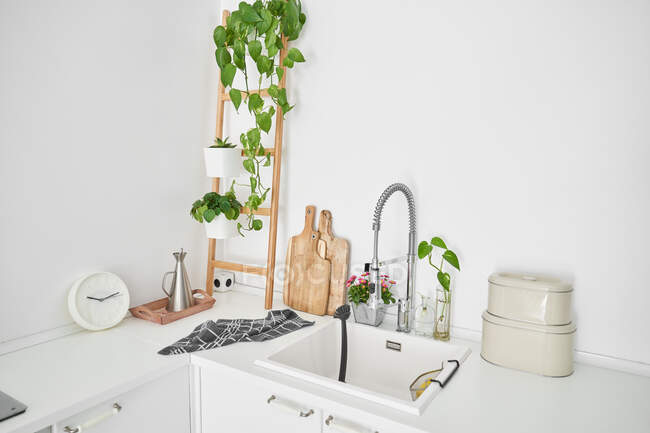 View of the kitchen sink of a minimalist, all-white house with plants — Stock Photo