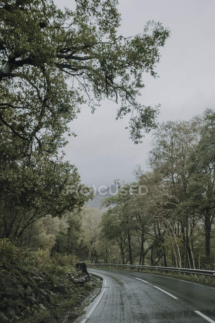 Gloomy scenery with curvy wet asphalt road running away through green forest in mountainous terrain in overcast weather in Scottish countryside — Stock Photo