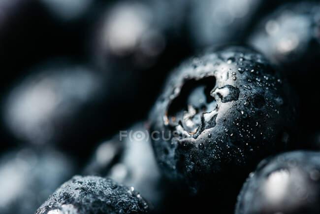 Encerramento fundo natural com apetitosos frescos maduros e mirtilos suculentos com gotas de água — Fotografia de Stock