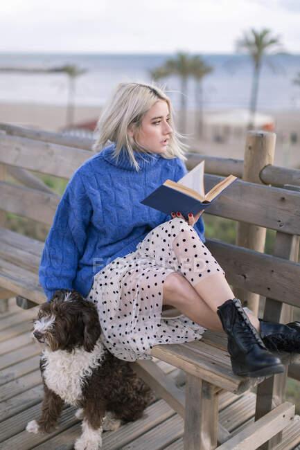 Молода самка в синьому светрі і спідниця сидять на дерев'яній лавці і печуть собаку, відпочиваючи з книжкою на морському дні, дивлячись убік. — стокове фото