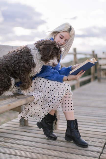 Junge Frau in blauem Pullover und Rock sitzt mit Hund auf Holzbank, während sie mit Buch am Meer ruht — Stockfoto