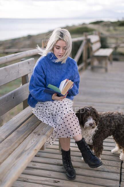 Junge Frau in blauem Pullover und Rock sitzt mit Hund auf Holzbank am Meer — Stockfoto