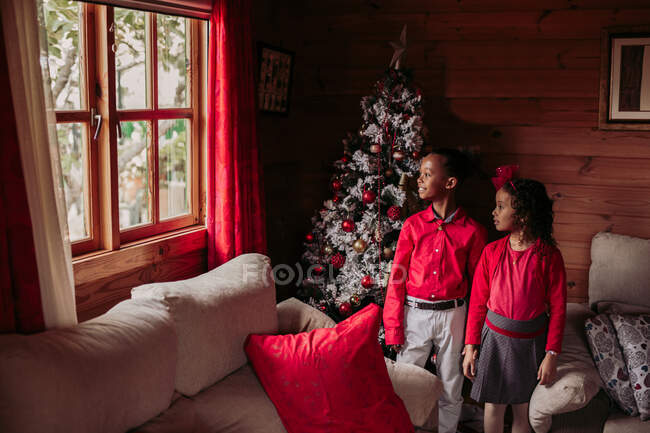 Two black girls looking at camera with a Christmas tree behind — Stock Photo