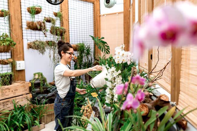 Бічний вид молодого садівника посміхається і поливає квітучі квіти і рослини під час роботи в дерев'яному оранжереї. — стокове фото