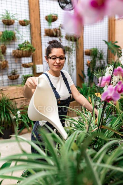Вид сбоку на молодую садовницу, улыбающуюся и поливающую цветы и растения во время работы в деревянной оранжерее — стоковое фото