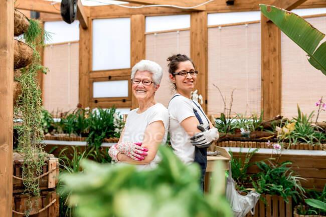 Вид сбоку положительных пожилых и взрослых женщин в перчатках и очках, улыбающихся на камеру и скрещивающих руки во время совместной работы в закрытом саду — стоковое фото