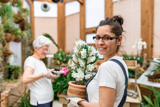 Woman looking at camera and carrying potted flower while mature lady cutting plant leaves during work in wooden hothouse — Stock Photo