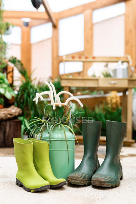 Gardening tools placed on floor near rubber boots and watering can in greenhouse — Stock Photo